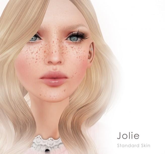 Jolie standard shiny shabby Vendors