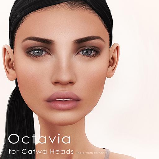 Octavia Vendor