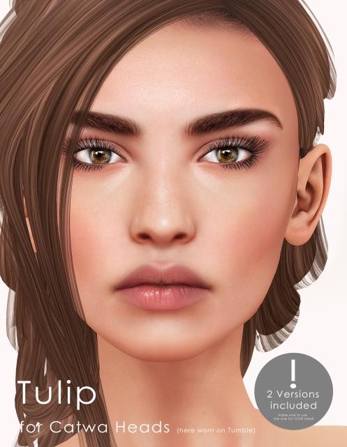 tuilp-vendor-2