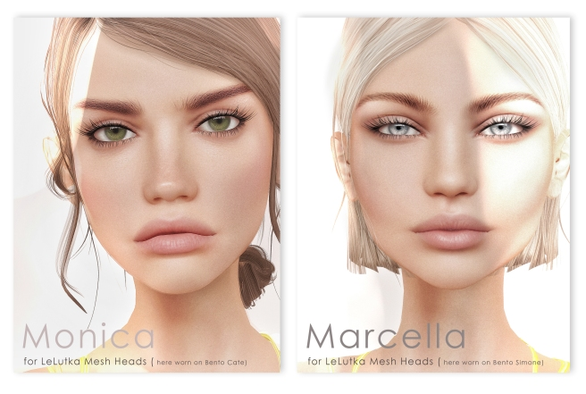 Marcella monica Vendor